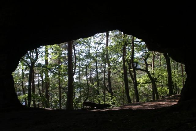 Höhle im Pfälzerwald. Foto: Gabi Saler