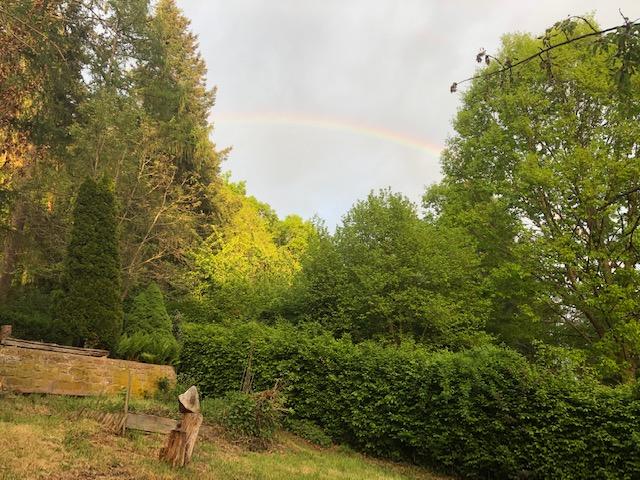 Regenbogen über Eußerthal in der Südpfalz. Foto: Gabi Saler